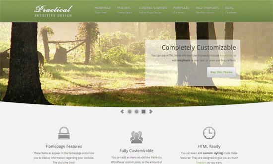 Practical WordPress Theme