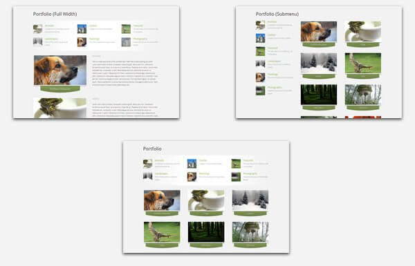Introducing Practical, a Really Flexible Corporate Theme 2