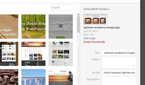 Always make sure to populate the metadata fields of an image for accesibility and SEO purposes.