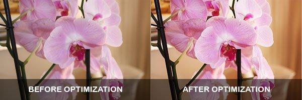 image-optimization-photoshop