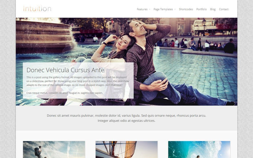 Intuition Pro WordPress Theme